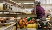 Gospodarowanie odpadami pochodzącymi z branży spożywczej