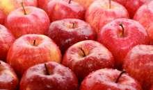 Jadalna powłoka do warzyw i owoców